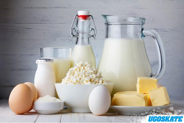 Молочные продукты в рационе фигуриста Ugoskate